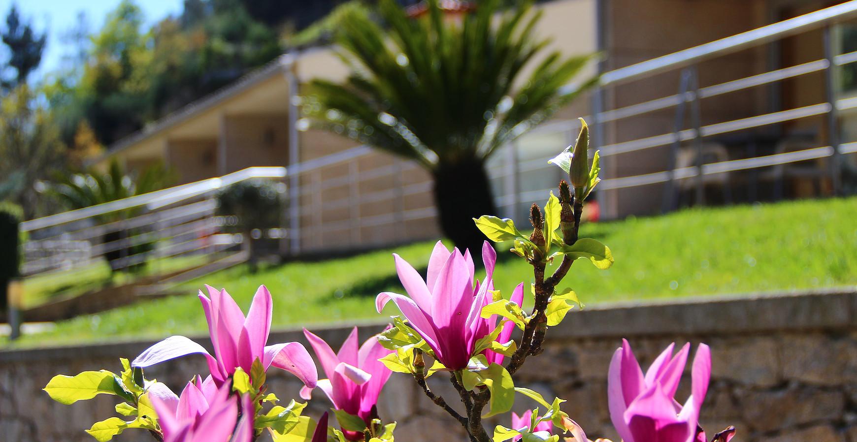 Bungalow com lareira na Vila do Gerês