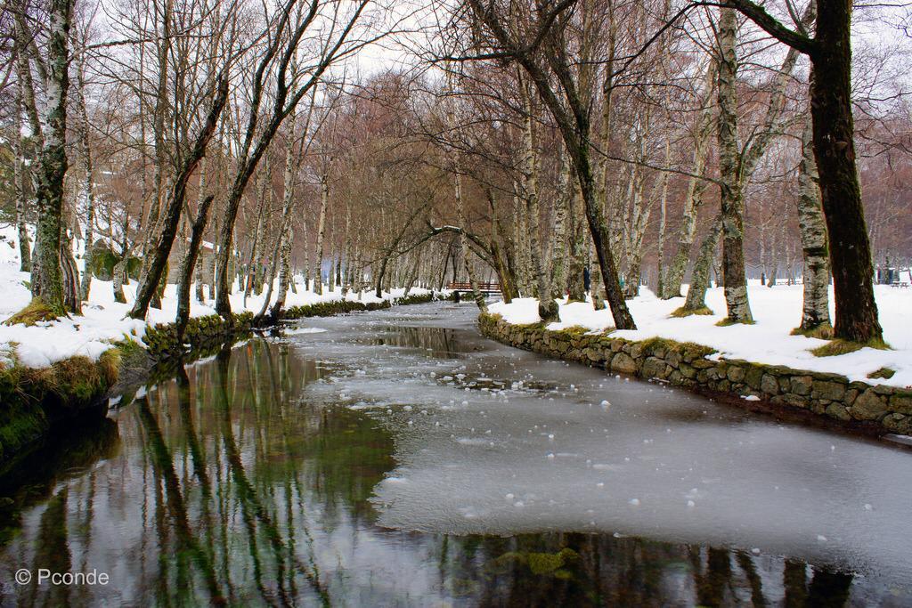 Bungalow na Serra da Estrela