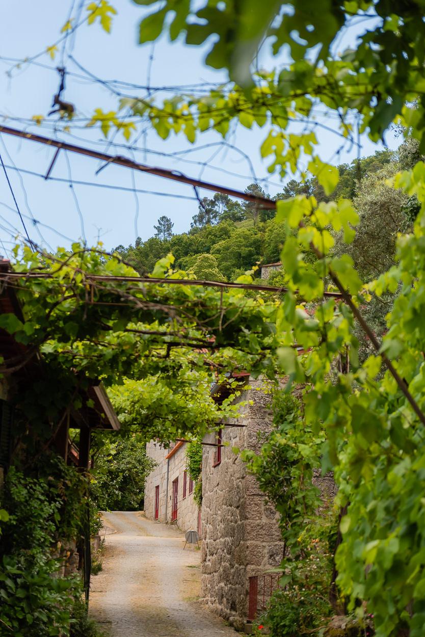Casa 3 em aldeia turística